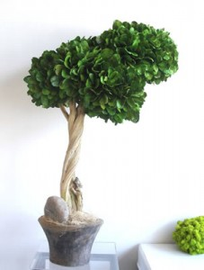 Sculptural Tree from Krislyn Boutique and Design Studio